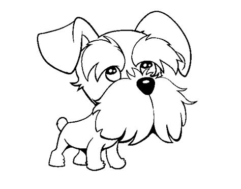 Schnauzer Coloring Pages realistic schnauzer coloring pages