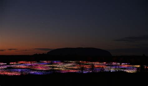 lights in the night the field of light at uluru dronepunks