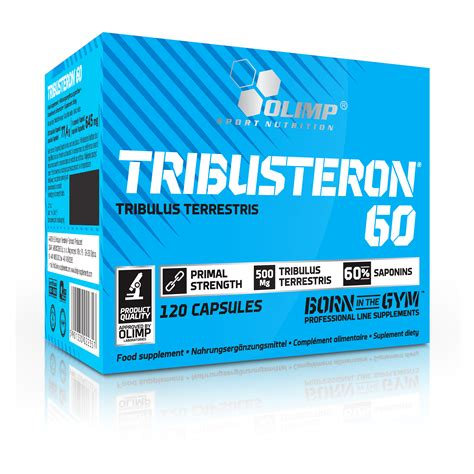 t booster and creatine tribusteron 60