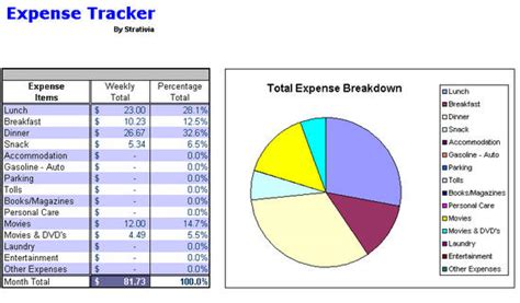 expense tracking chart image gallery expense chart