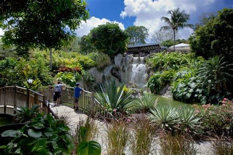 What S On At Botanical Gardens In Paradise What S Going To Happen And How