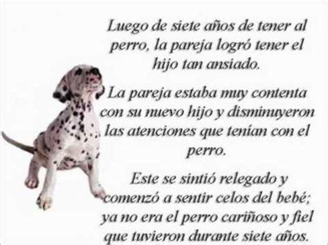 poema de los animales de 4 estrofas que rimen mi perro fiel mi amigo fiel youtube