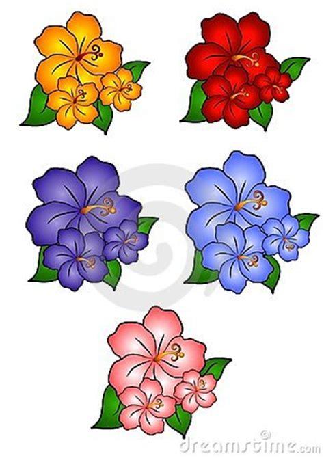 imagenes flores hawaianas 5 flores hawaianas del hibisco im 225 genes de archivo libres