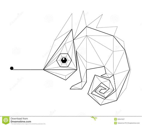 chameleon low polygon illustration stock vector image