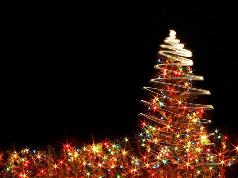 christmas tree lights background hd wallpaper of christmas