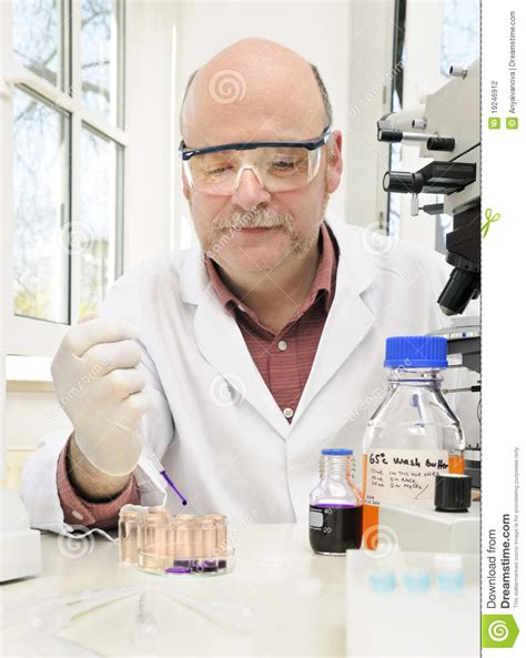 bench scientist senior scientist works at the bench stock photography image 19246912