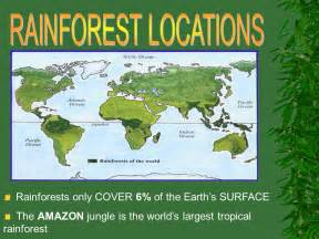 Plants That Live In The Tropical Rainforest Biome - forest biomes ppt video online download