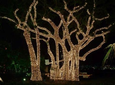 how to string lights on tree branches 37 best fall lanterns decor fall house decor interior images on outside