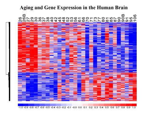 genetics of hair color gene expression research yankner lab