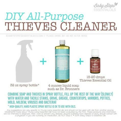 Best Quality Yl Essential Thieves Waterless Purifier 5 Ml 25 best images about yleo cleaning on