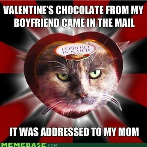 Cute Valentines Memes - funny cute valentines day memes www pixshark com