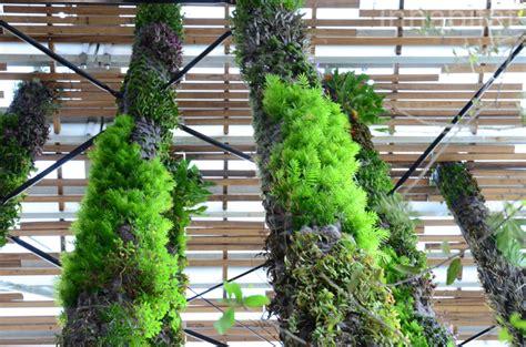 Hanging Vertical Garden Photos Blanc Hangs 67 Extraordinary Vertical