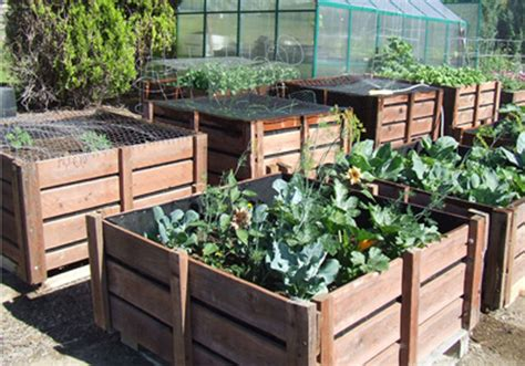 Vegetable Garden In Pallet Pallet Garden Bins