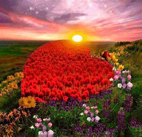 imagenes naturales de buenos dias paisajes romanticos related keywords suggestions