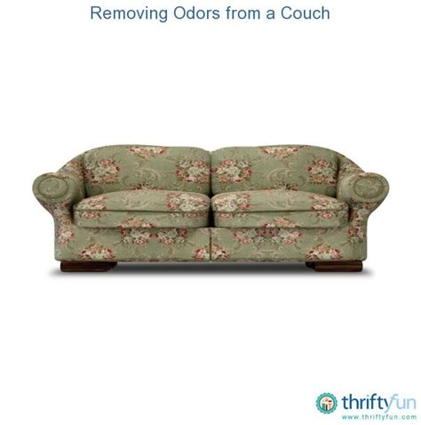 remove pet odor from couch removing odors from a couch thriftyfun