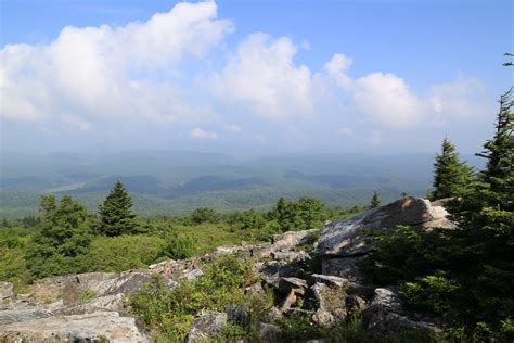 Spruce Knob photo gallery summer in the allegheny backcountry of