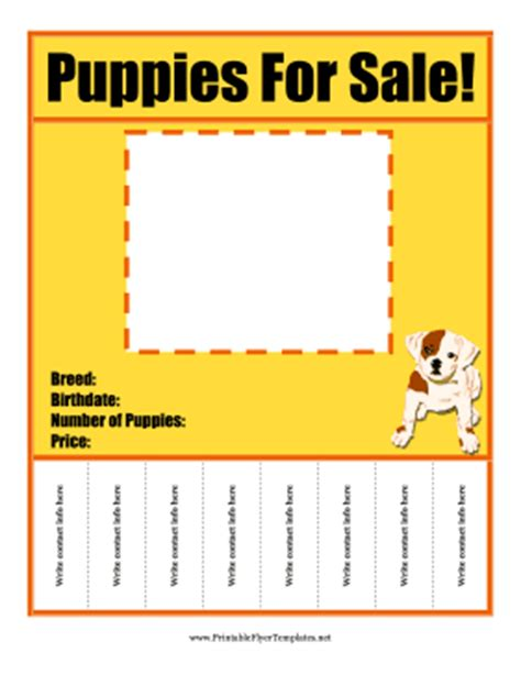 templates for sale puppies for sale flyer