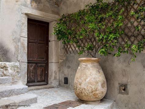 gelsomini in vaso vasi per trachelospermum piante da giardino vasi per