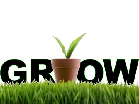 the growing six tips on how to grow a business using lead nurturing