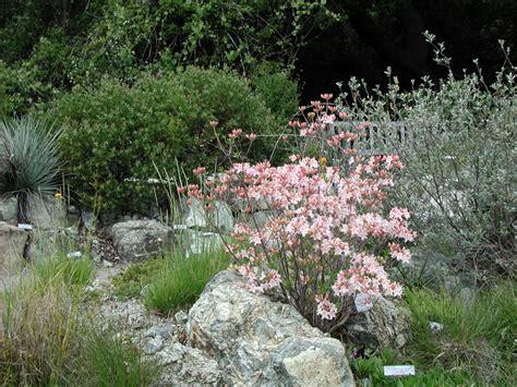 California Uc Botanical Garden Uc Botanical Gardens