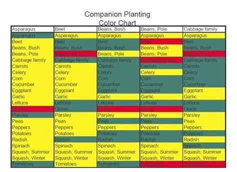 Companion Planting Chart Gardening Outdoors Pinterest Vegetable Garden Companion Planting Guide