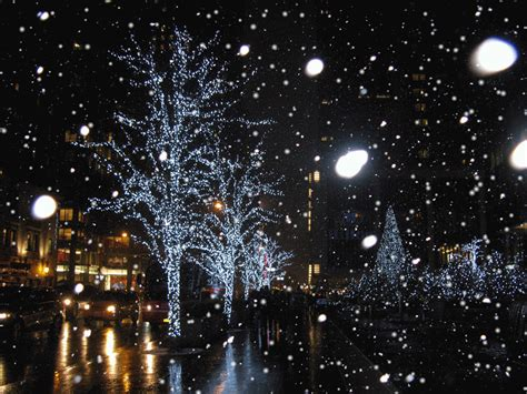 christmas lights snowflakes falling snow falling on trees gif trees beautiful white lights branches snow gif photos