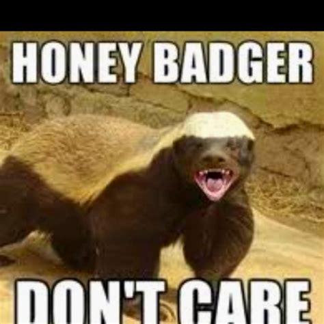 quotes  love honey badger honey quotesgram
