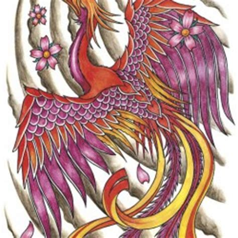 fenice tattoo gallery disegni ideatattoo