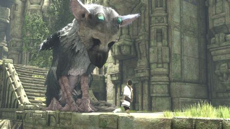 the last guardian ps4 the last guardian ps4 2016 release date confirmed at e3