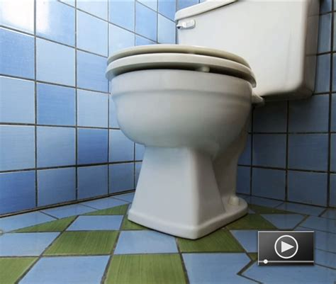 bidet leaking fixing a leaky toilet buildipedia
