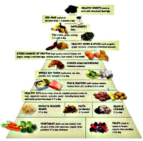 nutrition guides myplate usda and dr weils anti inflammatory food nutrition guides myplate usda and dr weil s anti