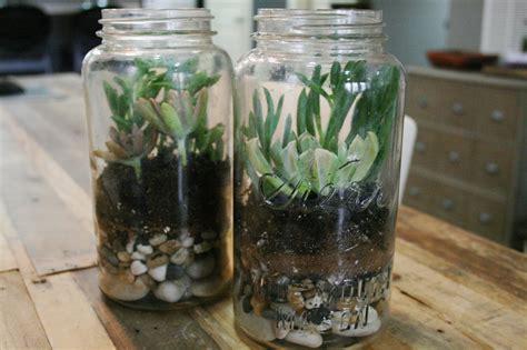 bluebonnet press diy mason jar terrarium