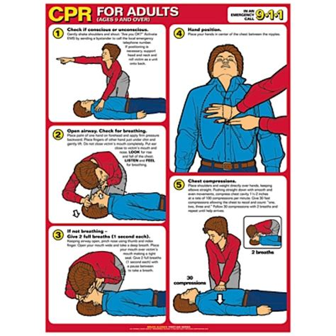 printable cpr poster cpr chart laminated poster with eyelets adult