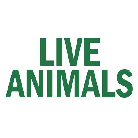 Aufkleber Lebende Tiere by Live Animals Travel Sticker From Splendid Pets Uk