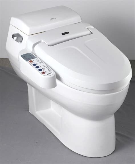 toilet bowl with bidet winging it