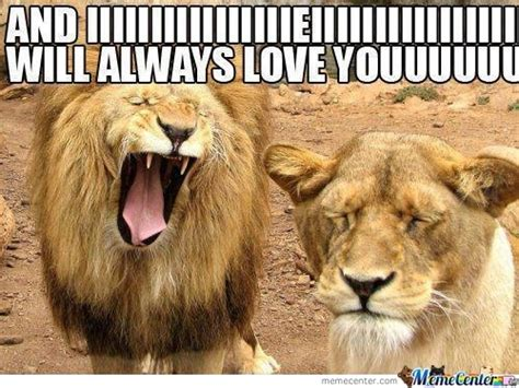 And I Will Always Love You Meme - i will always love you memes best collection of funny i