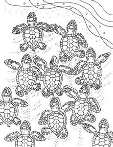 baby sea turtles coloring embroidery pattern sea