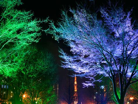 energy best green led light metal christmas tree outdoor lighting hire surrey fusion sound light