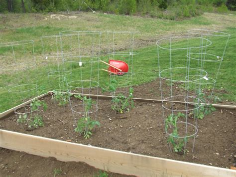 raised bed vegetable gardens   build