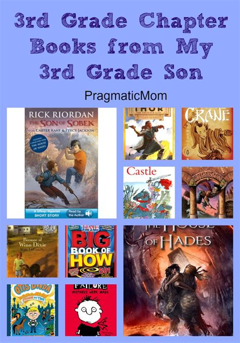 third grade picture books 3rd grade book report shopping bag st george parish school