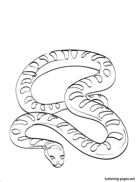 Anaconda Coloring Page anaconda coloring page coloring pages