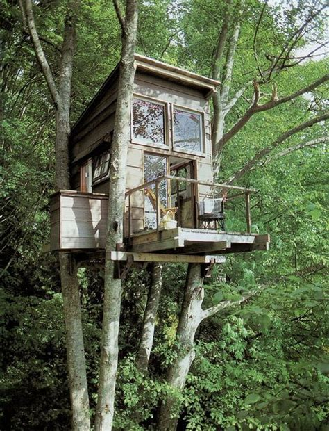 really cool tree houses really cool looking treehouse tree houses pinterest