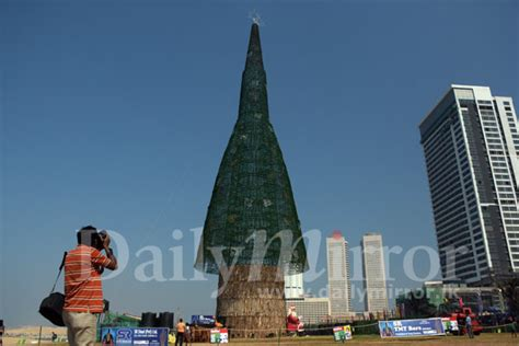 tallest xmas teee in tge workf the world s tallest artificial tree daily mirror sri lanka breaking news