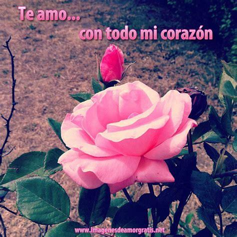 imagenes de amor gratis para facebook descargar imagenes de amor para facebook gratis www