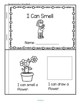 sense  smell centers  activities  preschool