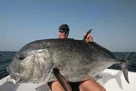 foto  mancing  ikan besar gambar akunttcom