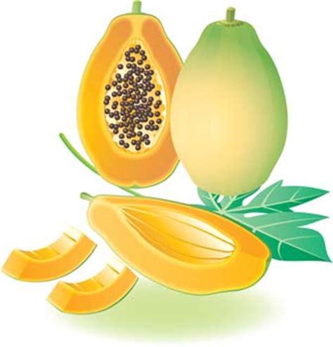 papaya cliparts   clip art  clip