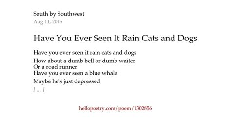 Words That Rhyme With Stool by You Seen It Cats And Dogs By South By