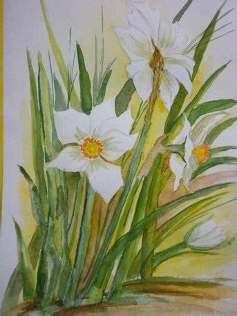 Narcissus Toska 2015 karinsbuntewelts jimdo page