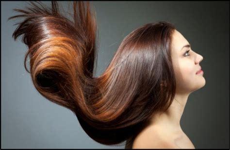 royalshahnaz beauty salon royal shahnaz beauty salon beauty salons dubai